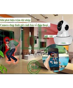 Camera Smart Wifi MoLi